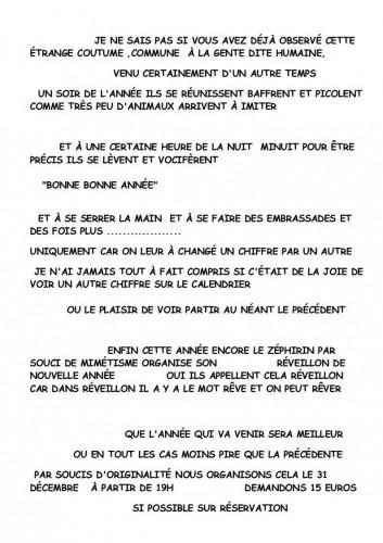 TEXTE JOUR DE L'AN 2013-2014.jpg