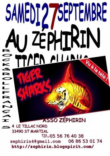 AFFICHE TIGER SHARKS 3.jpg